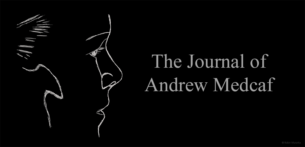 The Journal of Andrew Medcaf by Robin Murarka